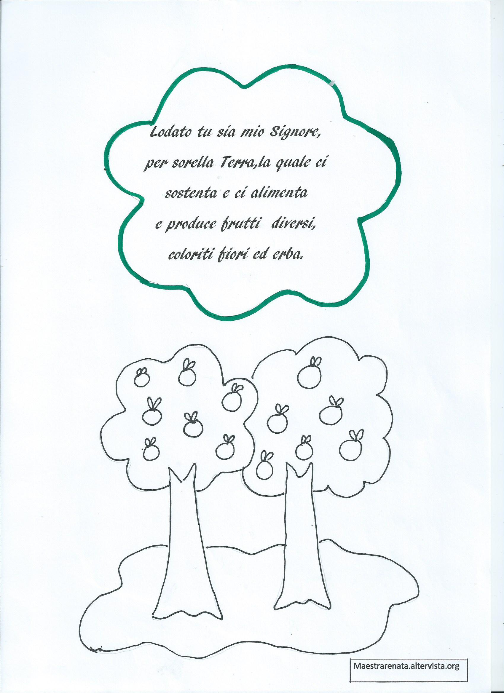 Top San Francesco - MaestraRenata ND41